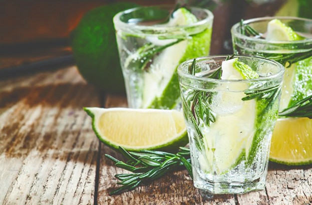 The Health Benefits Of Gin