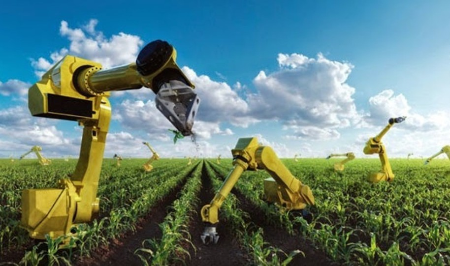 robots-in-agriculture